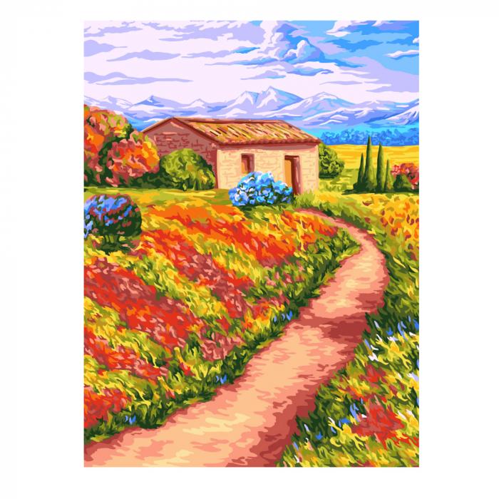 Set pictura pe numere, cu sasiu, Peisaj rural [0]