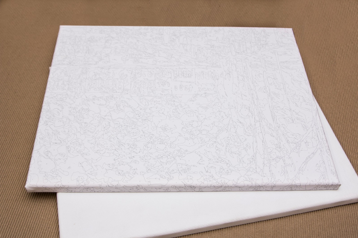 Set pictura pe numere, cu sasiu, Leu curcubeu, 40x50 cm [2]