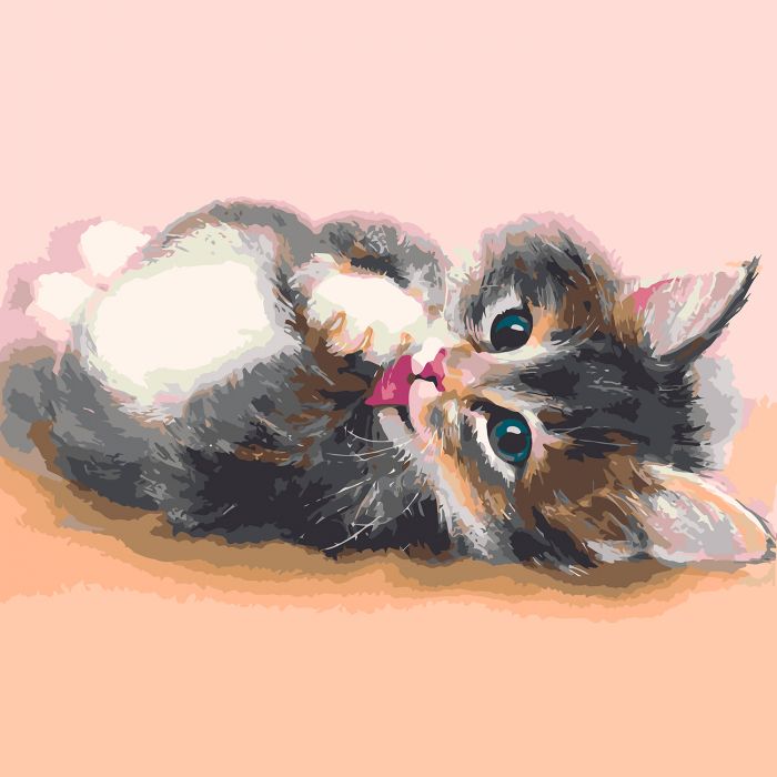 Set pictura pe numere, cu sasiu, Cute kitten, 40x50 cm 2