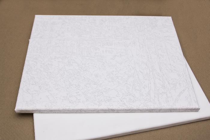 Set pictura pe numere, cu sasiu, Pasari Rosii, 40x50 cm [3]