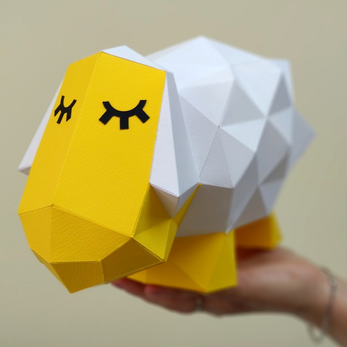 Set origami 3D, Oaie 2