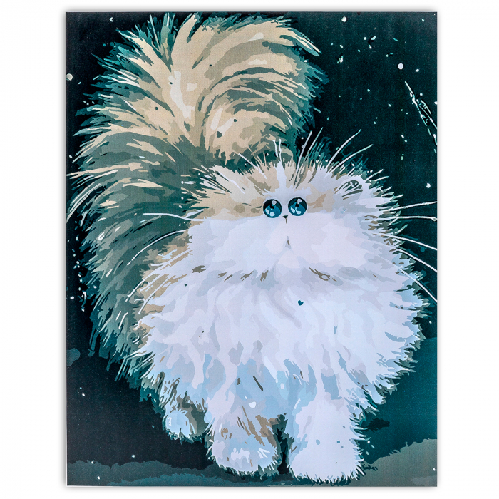 Pictura pe Numere, cu sasiu, Pisica Pufoasa, 30x40 cm 0