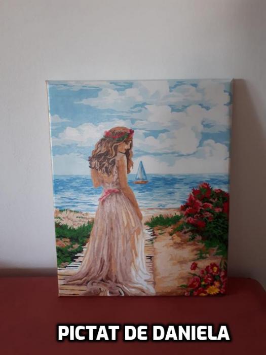 Set pictura pe numere, cu sasiu, Rataciri Indepartate 40x50 cm [3]