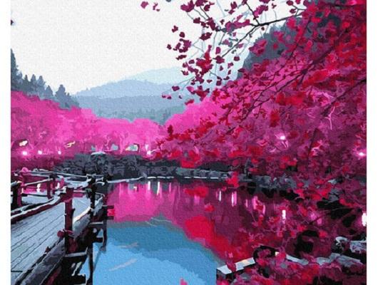 Set pictura pe numere, cu sasiu, Sakura, 40x50 cm [0]
