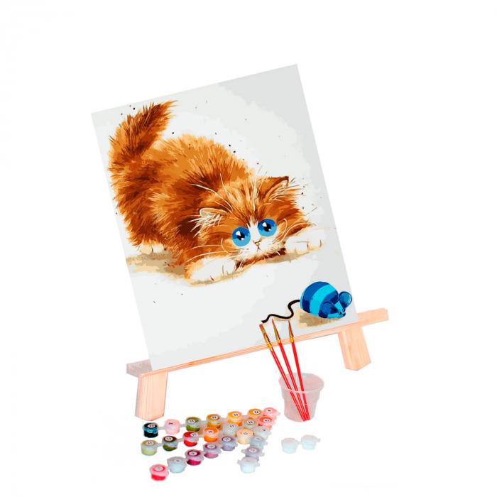 Pictura pe numere, cu sasiu, Soarelece si pisica, 30x40 cm 1