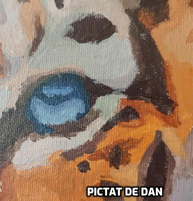 Set pictura pe numere, cu sasiu, Tigru [2]