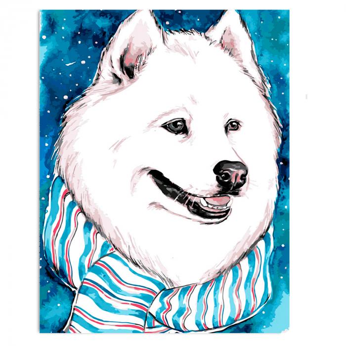 Pictura pe numere, cu sasiu, White Friend, 30x40 cm 0