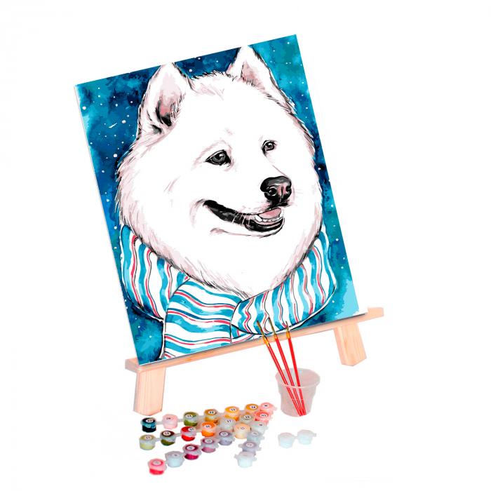 Pictura pe numere, cu sasiu, White Friend, 30x40 cm 1