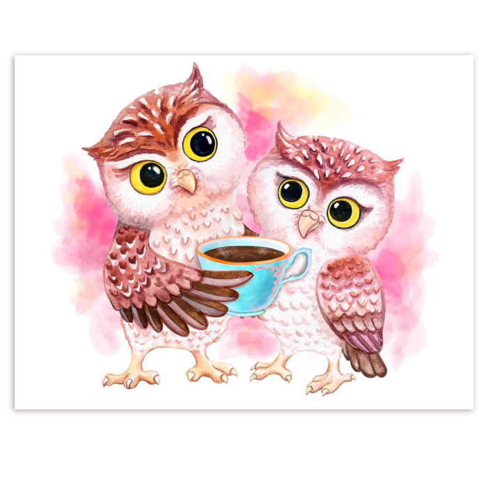 Set pictura pe numere, cu sasiu, Cute Owls, 30x40 cm 1