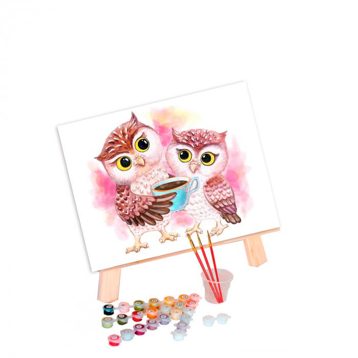 Pictura pe numere, cu sasiu, Cute Owls, 30x40 cm 0