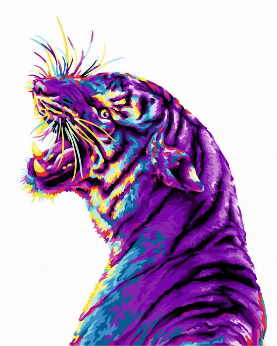 Set pictura pe numere, cu sasiu, Zambetul tigrului 0