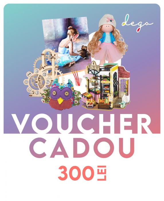 Voucher cadou 300 lei [0]