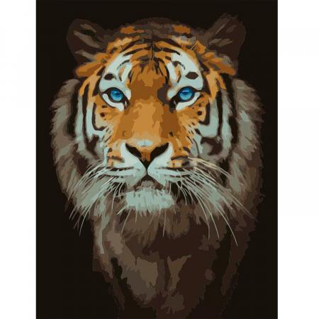 Set pictura pe numere, cu sasiu, Tigru, 40x50 cm0