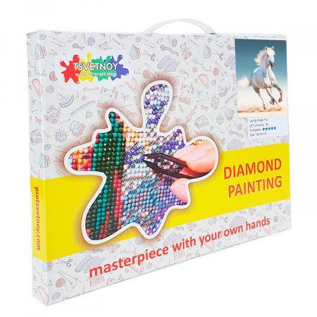Set goblen cu diamante, cu sasiu, Cal alb, 40x50 cm3
