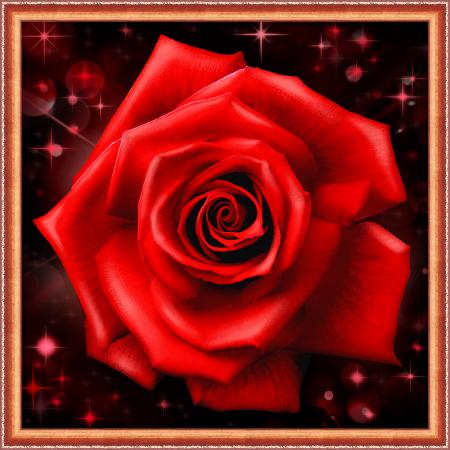 Set goblen cu diamante, fara sasiu, Trandafir stralucitor [0]