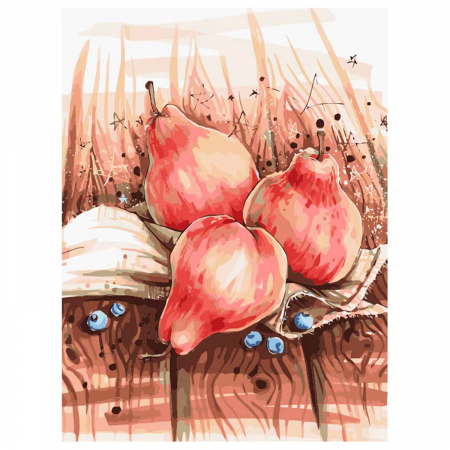 Set pictura pe numere, cu sasiu, Still Life with Pears, 40x50 cm1