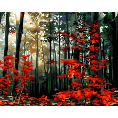 Set pictura pe numere, cu sasiu, Dimineata in Padurea de Toamna,, 40x50 [0]