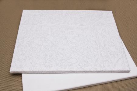 Set pictura pe numere, cu sasiu, Lup - pop art, 40x50 [4]