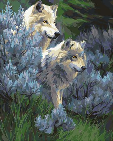 Set pictura pe numere, cu sasiu, Lupi, 40x50 cm0