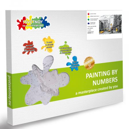 Set pictura pe numere, cu sasiu, Metropola, 40x50 cm6