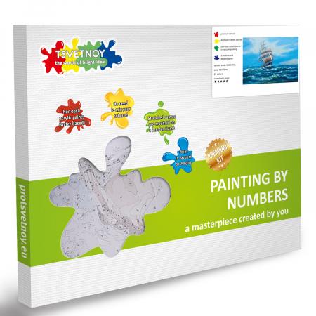 Set pictura pe numere, cu sasiu, Panze Albe [4]