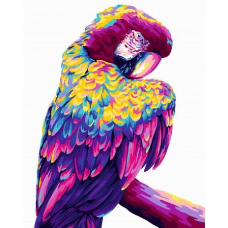 Set pictura pe numere, cu sasiu, Papagal Pop Art, 40x50 [0]