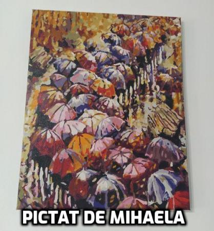 Set pictura pe numere, cu sasiu, Peisaj de Toamna [1]