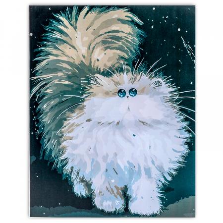Set pictura pe numere, cu sasiu, Pisica pufoasa, 30x40 cm0
