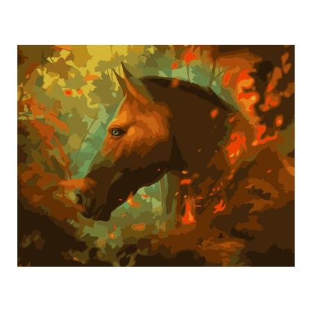 Set pictura pe numere, cu sasiu, Bonfire, 40x50 cm0