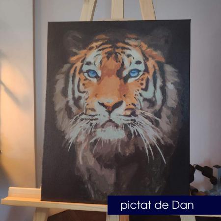 Set pictura pe numere, cu sasiu, Tigru [1]