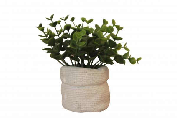Planta artificiala in ghiveci din ciment, inaltime 14 cm 2