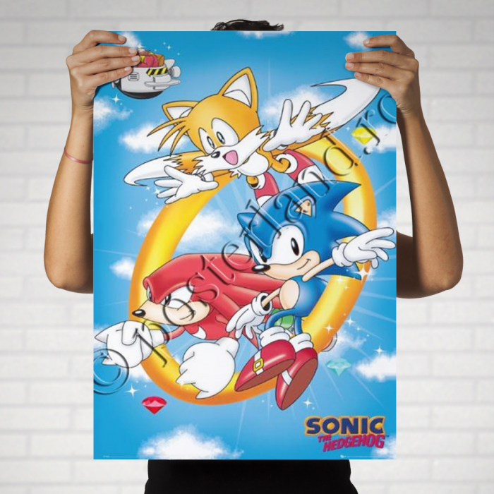 SONIC The Hedgehog 0