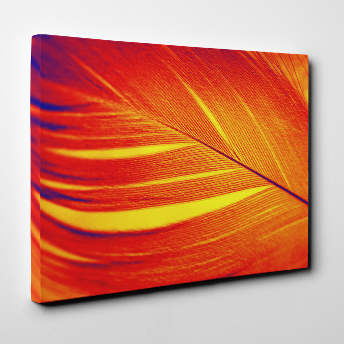 Tablou canvas abstract, Pana rosie 3