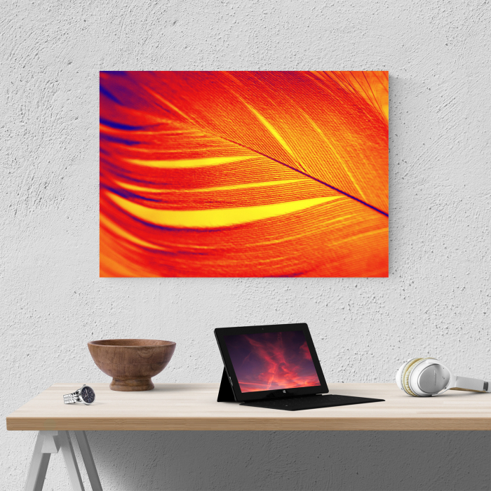 Tablou canvas abstract, Pana rosie 1