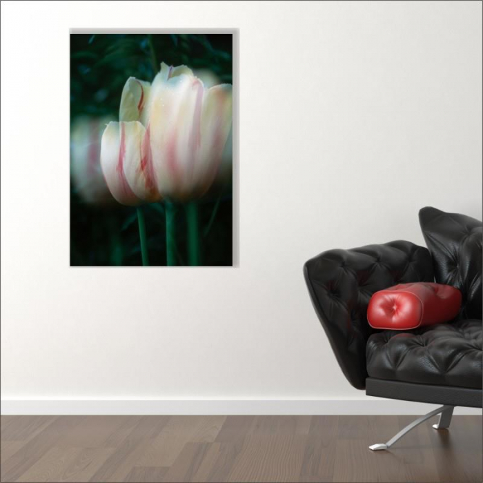 Tablou canvas floral, Blurred Tulip 1