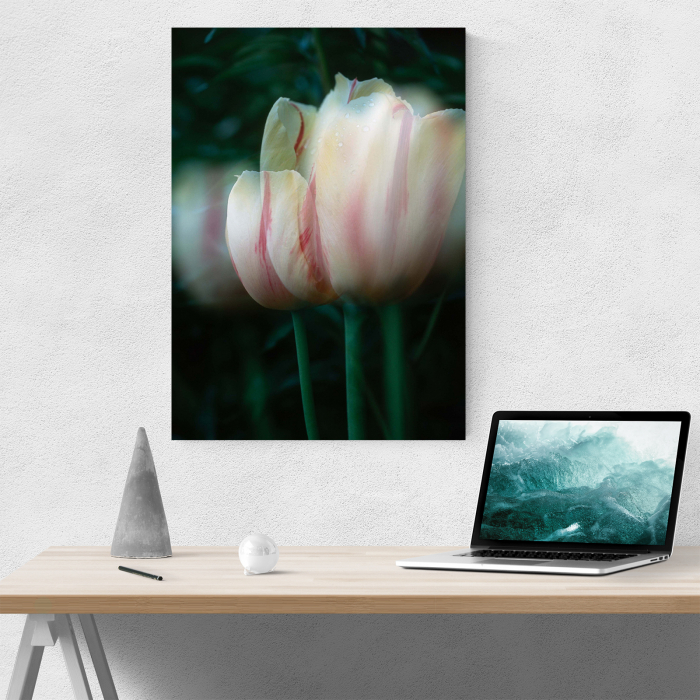 Tablou canvas floral, Blurred Tulip 4