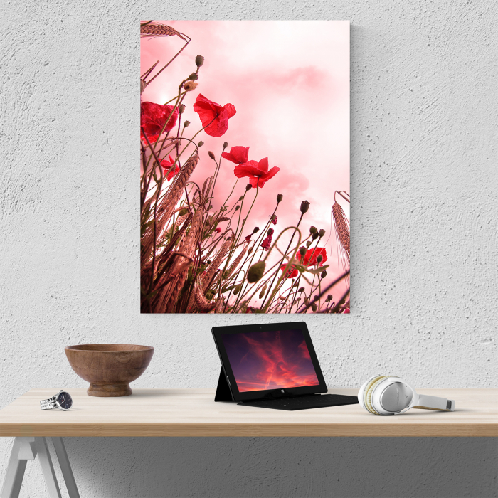 Tablou canvas floral, Pink and Poppies 4