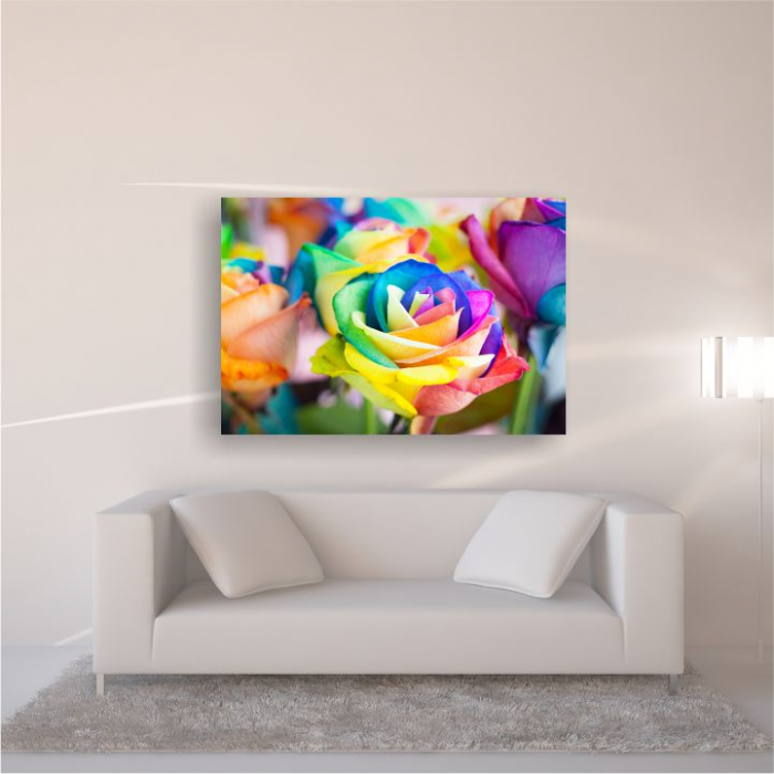 Tablou canvas floral, Rainbow Roses 4