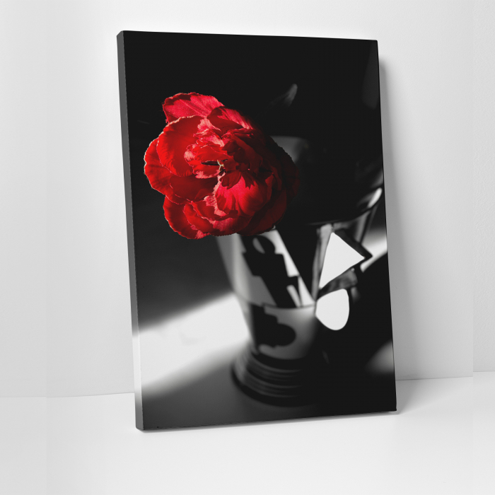 Tablou canvas floral, Red Rose on Black 0