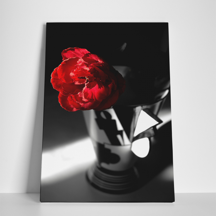 Tablou canvas floral, Red Rose on Black 2