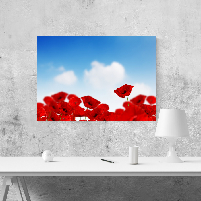 Tablou canvas floral, Sky and Poppies 3