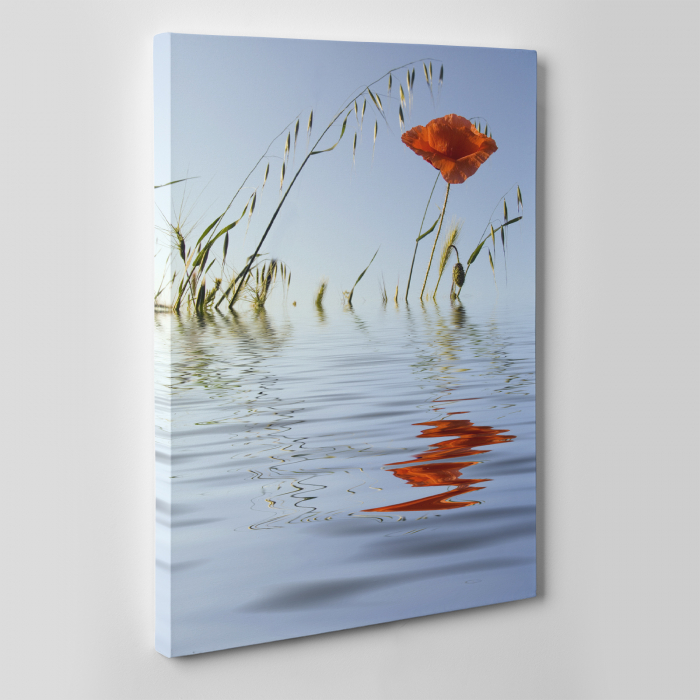 Tablou canvas floral, Water Reflections 3