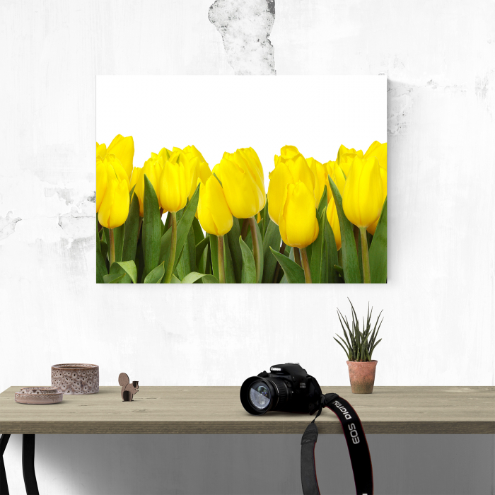 Tablou canvas floral, Yellow Tulips 1