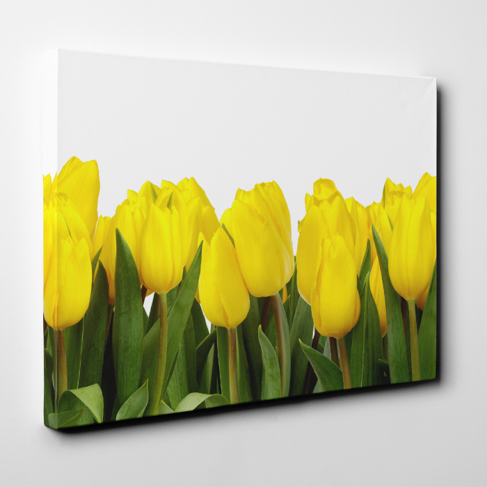 Tablou canvas floral, Yellow Tulips 3