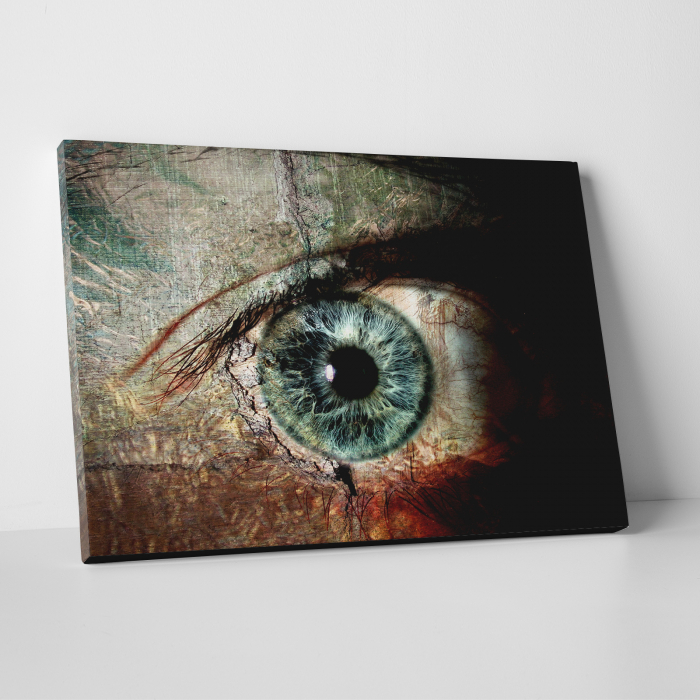 Tablou canvas people, The eye 0