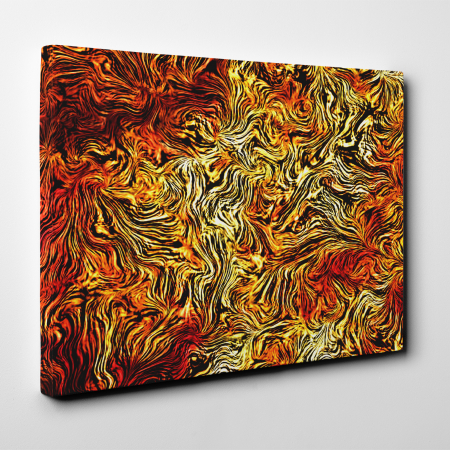 Tablou canvas abstract, Leo Skin3