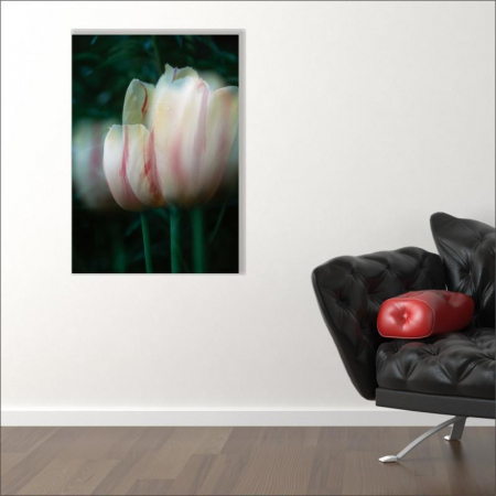 Tablou canvas floral, Blurred Tulip1