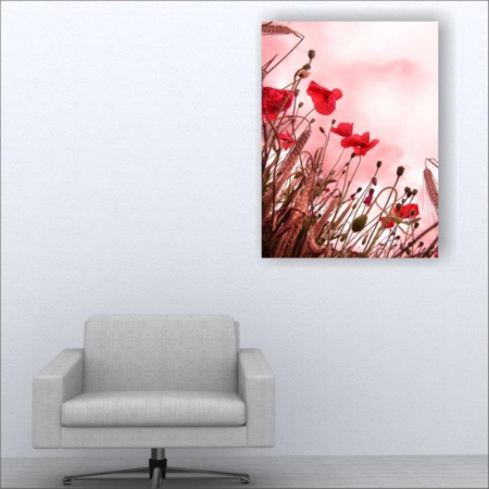 Tablou canvas floral, Pink and Poppies1