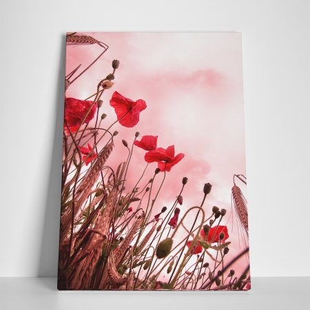 Tablou canvas floral, Pink and Poppies2