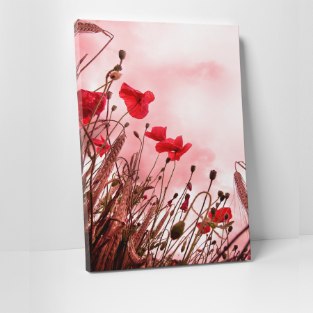 Tablou canvas floral, Pink and Poppies0